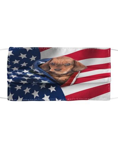 SHN 10 Opened American flag Dachshund