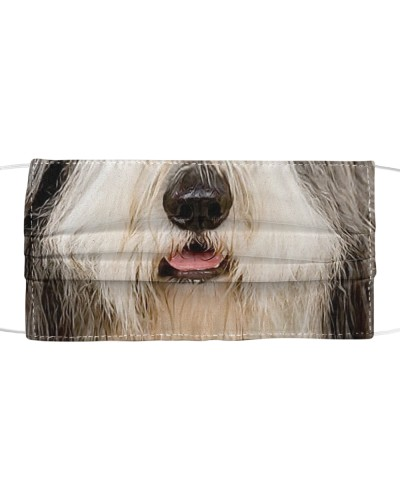 th 7 bearded collie face