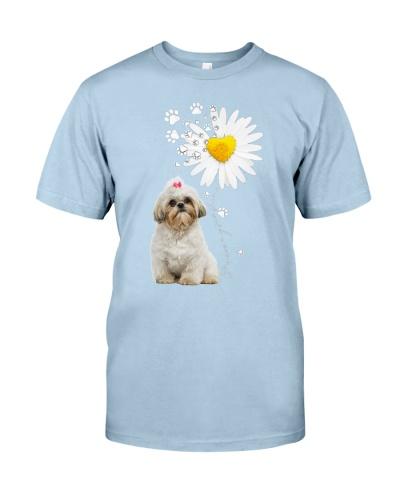 Fn 2 shih tzu daisy my sunshine