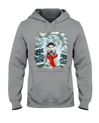 Siberian husky in snow forest