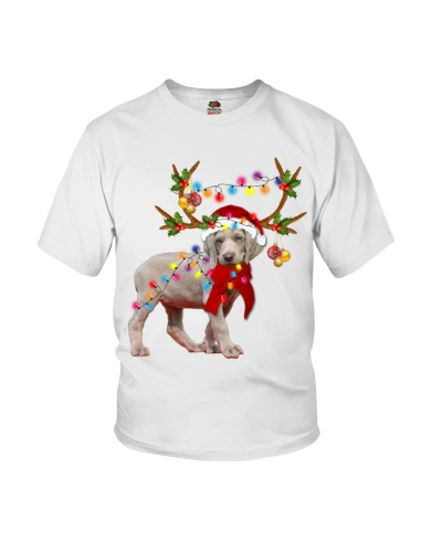 Weimaraner gorgeous reindeer