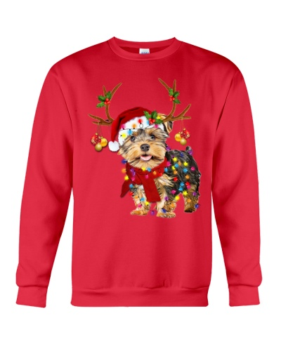 Yorkshire terrier gorgeous reindeer