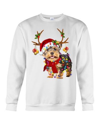Yorkshire terrier gorgeous reindeer