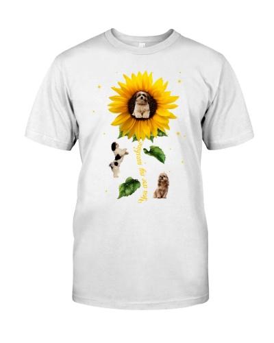 Shihtzu sunflower shines