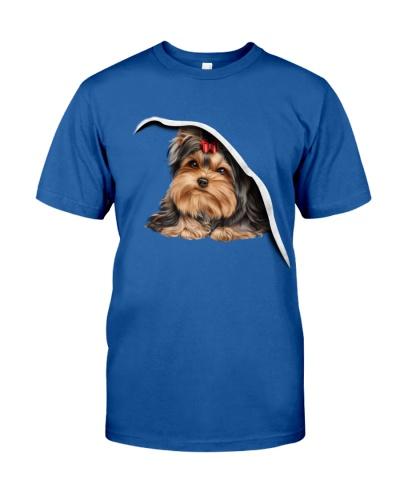 Yorkshire terrier my love
