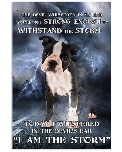 Boston Terrier I Am The Storm