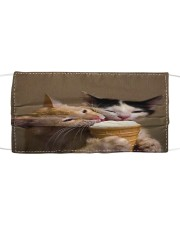 TH 32 Cat Eating Ice Cream Cloth face mask front
