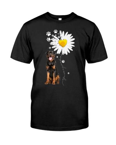Fn 2 rottweiler daisy my sunshine cus