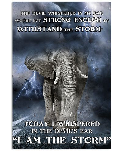 Elephant I Am The Storm