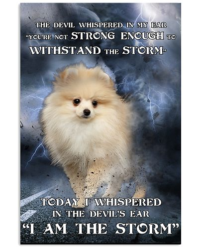 Pomeranian I Am The Storm