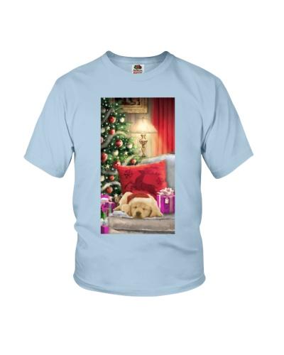 SHN Christmas house sleeping Golden Retriever