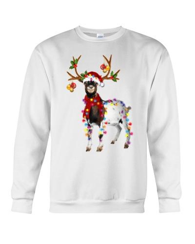 Goat gorgeous reindeer