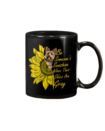 SHN Sunshine skies gray Yorkshire Terrier