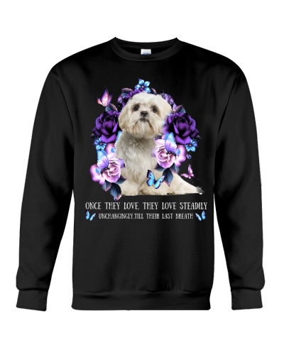 Shih tzu once they love
