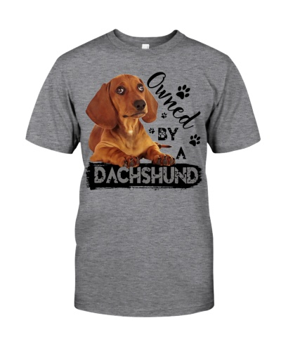 Owned by a Dachshund