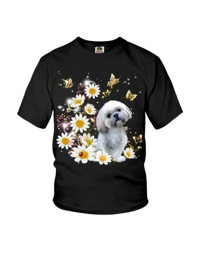 Shih tzu with daisy gypsophila
