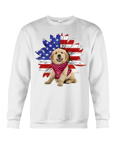 Fn 2 golden retriever sunflower and freedom