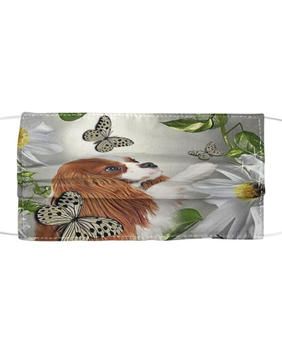 fn 5 Cavalier king daisy and butterfly face