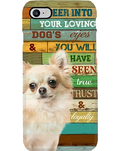 TTN 11 Chihuahua Peer Into Your Loving Dog's Eyes