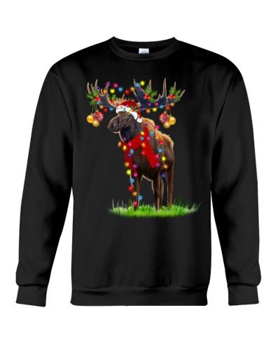Moose gorgeous reindeer