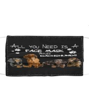 TH 12 Dachshund All You Need Cloth face mask front