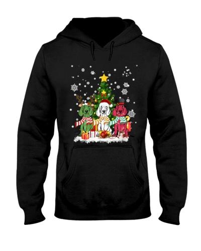 Dachshund funny christmas