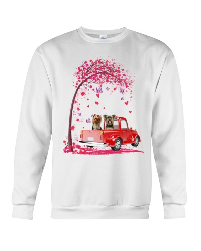 Yorkshire terrier pink heart car