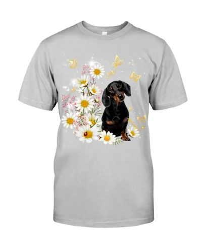 Dachshund with daisy gypsophila