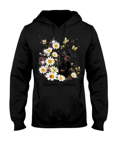 Dachshund with daisy gypsophila