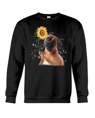 Boxer sunflower trend comeback