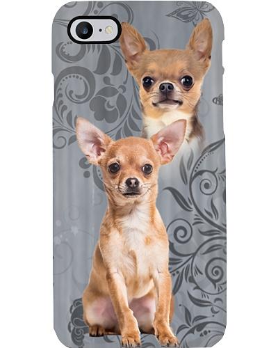 Chihuahua Cute