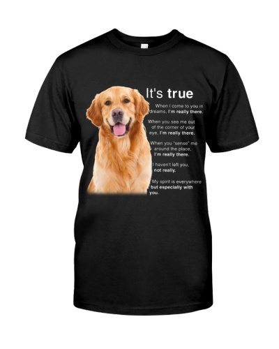 True when i come to you Golden retriever