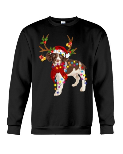 English springer spaniel gorgeous reindeer