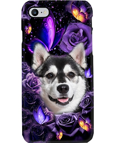 Husky Siberian purple twinkle flower