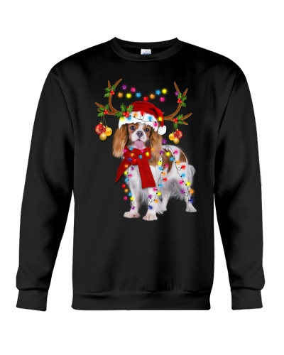 Cavalier King gorgeous reindeer