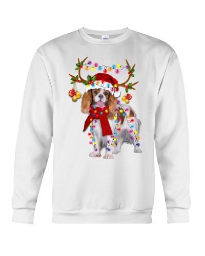 Cavalier King gorgeous reindeer