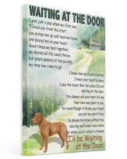 CHESAPEAKE BAY RETRIEVER WAITTING AT THE DOOR Gallery Wrapped Canvas Prints tile