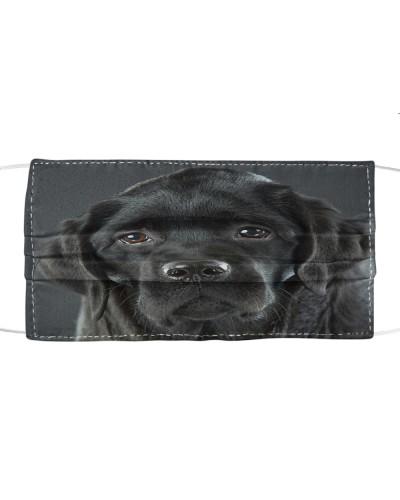 Fabric Mask Labrador Lover  - PC
