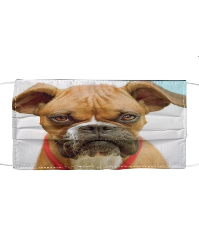 Fabric Mask Boxer Lover  - PC