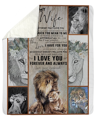 Blanket-Lion-To my wife-Love you forever-HTV