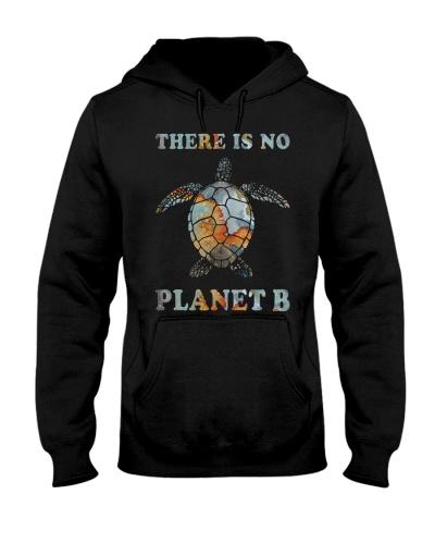 Turtle Planet B
