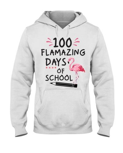 Teacher 100 flamazing days