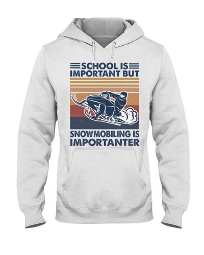 Snowmobile Importanter