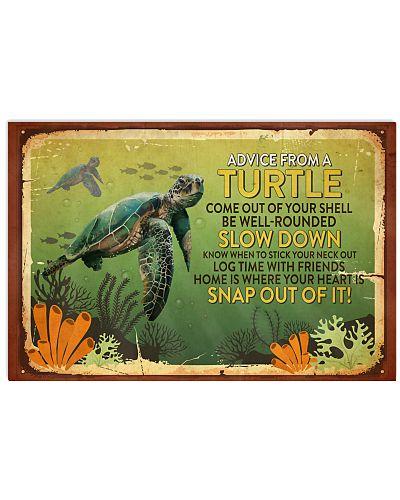 Turtle Advice