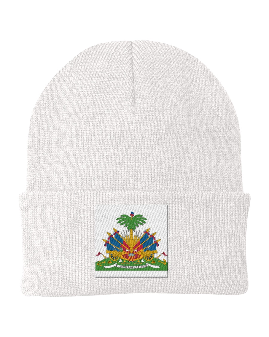 HAITI THE REVOLUTION WILL NOT BE TELEVISED Knit Beanie