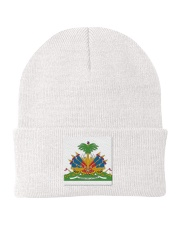 HAITI THE REVOLUTION WILL NOT BE TELEVISED Knit Beanie front