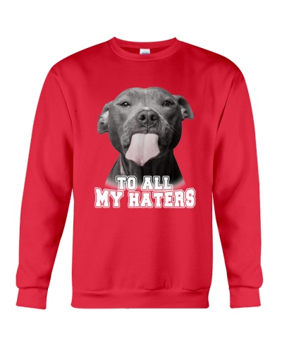 Pitbull To All My Haters